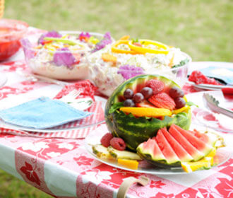 A Summer Picnic On A Lawn